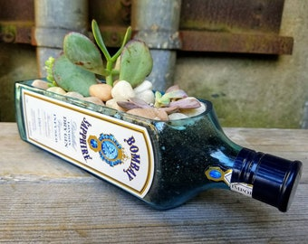 Bar Decor Succulent Planter, Upcycled Bombay Sapphire Gin Bottle, Cactus Garden, Cyan Blue