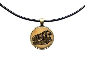 T-rex skull pendant Medical jewelry Anatomy necklace