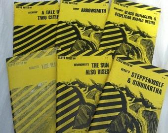 lot of Cliffs Notes, Cliffs Notes, Cliff Notes, Lot of Books, literature, vintage classics