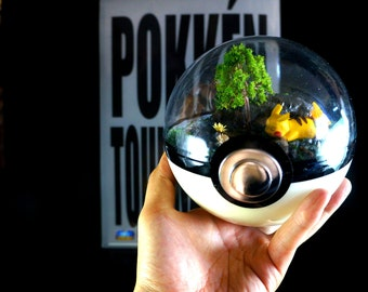 SLEEPING SERIES - 140mm (5.5inch) Pokeball Diorama