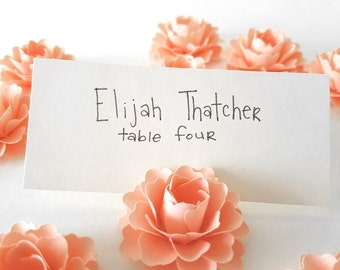 Peach Party Place Card Holders | Peach Paper Flowers (Set of 30)