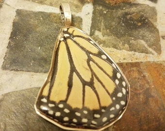 Monarch butterfly wing resin coated pendant