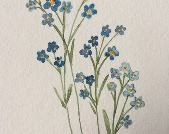 An original watercolor, Forget- me- Nots
