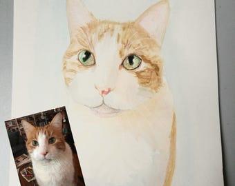 Cat portrait, Custom Cat portrait, Cute cat portait, Personalized Cat portrait, Pet Portrait Custom, Cat lover gift, Cat Art Print 8 x 10