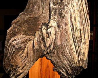 Rustic Driftwood Wall Sconce