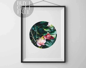 Flower Print Nature poster Flower photo printable Wall decor Flower photography Botanical wall art Rose print Flower wall art Floral Prints