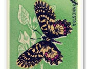 Vintage Butterfly Stamp W...