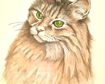 Custom cat pet portrait, pet painting, cat portrait