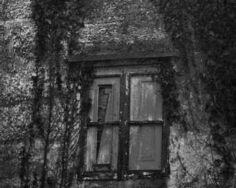 Window photography b & w