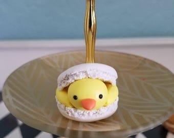 Spring Chick Macaronimal