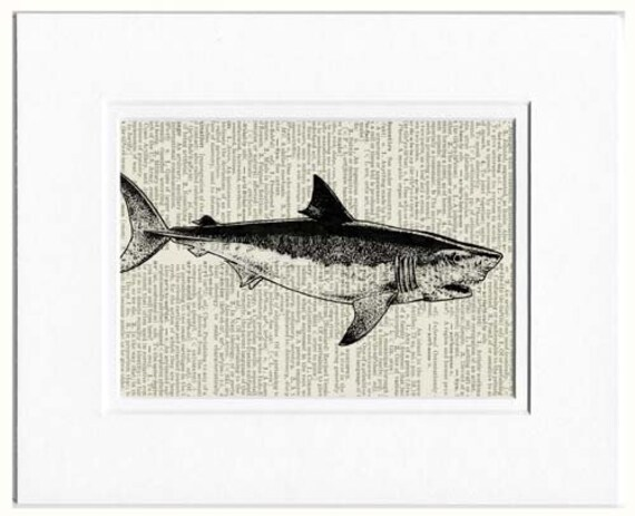 shark dictionary page print