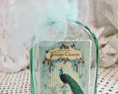 Vintage Green Charm, Bottle Art Accent with Peacock Graphic, Trims, Tulle, Pearls, Glitter, Home Decor Accent, ECS