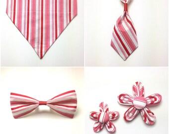 Pet Accessory - Candy Cane Stripe - Over the Collar - Custom - Bandana, Bow Tie, Neck Tie, Flower