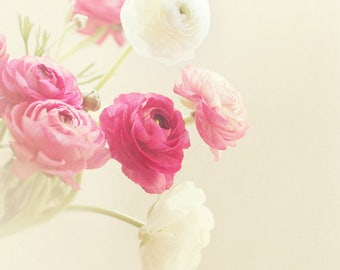 Ranunculus Flowers - Spring Photography - Nature Wall Art Prints - Pink, White, Blush - Floral Decor - Feminine Home - Botanical - Minimal