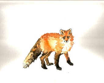 "Art Original Watercolor Animals Pets  "" Red Fox"""