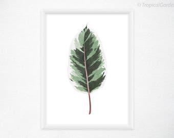 Figus Elastica Leaf, Tropical Leaf Print - Botanical Leaf, Watercolor Print / Modern Art, Tropical Decor