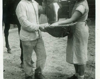 "Vintage Photo ""Feeding the Midnight Horse"" Snapshot Antique Photo Old Black & White Photograph Found Paper Ephemera Vernacular - 62"