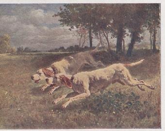 "C. Troyon ""Dogs Chasing Game"" Postcard -- 1929 (!)"