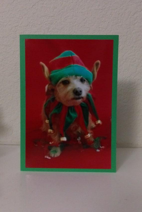 Dog Photo Christmas Card, Elf Christmas Card, Humorous Dog Christmas Card