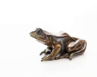 Common frog looking up . Limited edition bronze