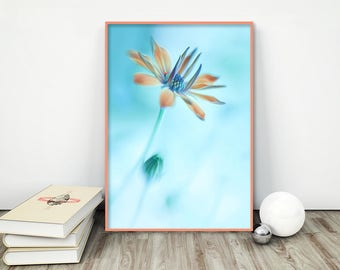 Flower Fine Art Photography, Flower Wall Art Print, Blue Wall Decor Print, Bedroom Wall Art Print, Fine Art Print, Photo Giclee Print