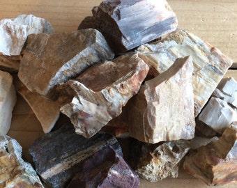 Petrified Wood Natural Raw Stone, Healing Stone, Healing Crystals,Chakra Stone, Spiritual Stone,Reiki Infused