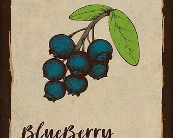 Blueberry Kitchen Print Rustic Kitchen Wall Decor 11 X 14 Poster