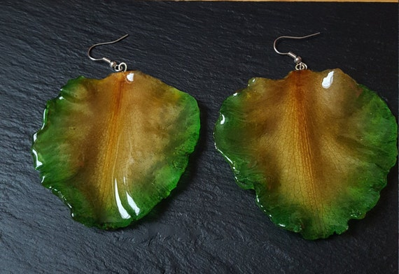 Real Cattleya Orchid Petal Earrings in Green and Yellow