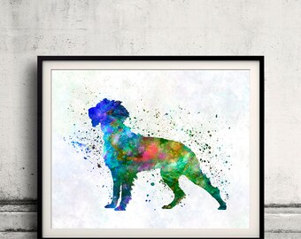 Pont Audemer Spaniel in watercolor 01 - Fine Art Print Poster Decor Home Watercolor Illustration Dog - SKU 2523