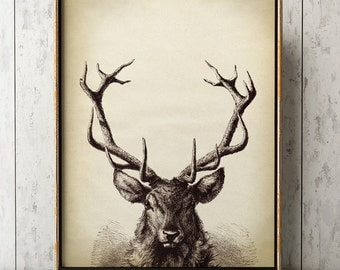 Deer Antlers print, deer print animal head poster, deer poster black and white wall decor