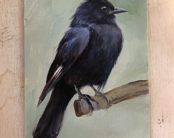 Crested Black Tyrant - Original oil painting - 5 x 7 inches