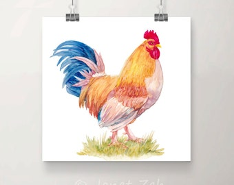 Rooster painting, original unframed watercolor, chicken wall art, kitchen decor, 11x11 hand painted chicken on Yupo paper by Janet Zeh