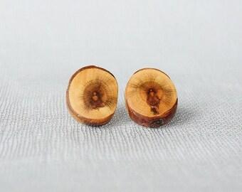 Wooden earrings stud - Buddha,wooden earrings,wooden earings,wooden jewelry,wooden sticks earrings