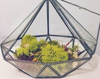Geometric Glass Diamond Terrarium