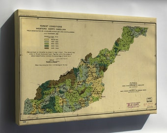 Canvas 24x36; Forest Map West North Carolina 1909