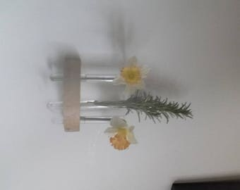 Test tube flower wall vase