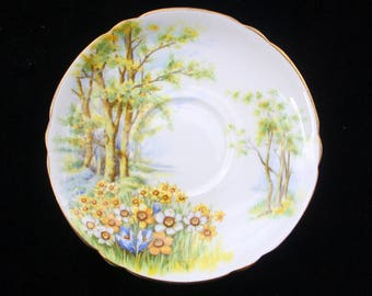 Beautiful Shelley Saucer in the Daffodil Time Pattern 5.625 inches (13370) Excellent