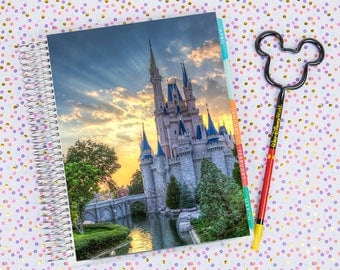 Disney World Erin Condren Life Planner Cover INSTANT DOWNLOAD - Cinderella Castle 11