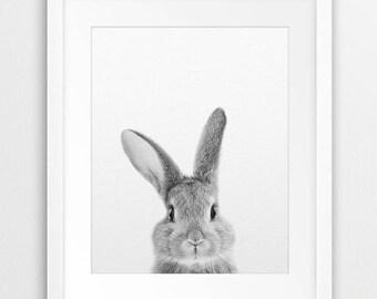 Rabbit Print, Nursery Animal Wall Art, Bunny Print, Woodlands Animal Print, Black And White Animal, Nursery Decor, Kids Room Printable Art