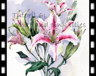Watercolor tutorial 6 White and pink lilies