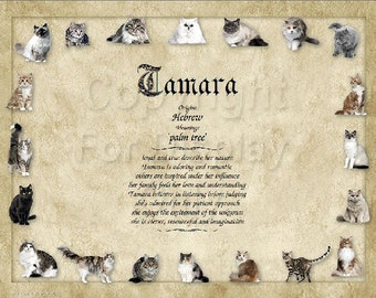Cat Lover's Personalized Name Meaning Print