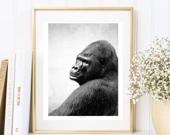 Fotografie, Affe, Gorilla, Tierposter, Kunstdruck, Druck, Tiere, Fineart print, Wandposter, schwarz weiß, minimalistisches Bild, Foto, Zoo