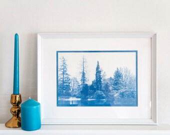 Cyanotype Hand Printed Photograph / Fine Art print / Trees / Woods / Nature / Scenery / Arrochar / Loch / Scotland