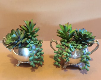 Faux Succulents, Vintage Silver Creamer or Sugar Bowl