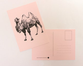Map camel, greeting card, postcard, postcard