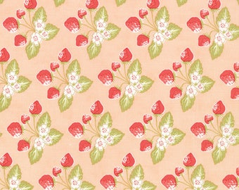 Moda Strawberry Fields Revisited Quilt Fabric 1/2 Yard By Fig Tree & Co Blush 20264 16