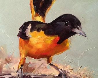 baltimore oriole // original art // bird art // bird painting // oriole painting // original painting // affordable art