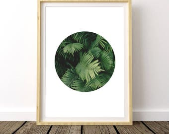 Tropical Foliage, Tropical Leaf Photo, Tropical Leafs Print, Tropical Wall Poster, Tropical Plant Print, Tropical Leaves, Tropical Print