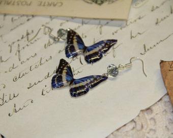 Blue / Black  Butterfly Resin Earrings