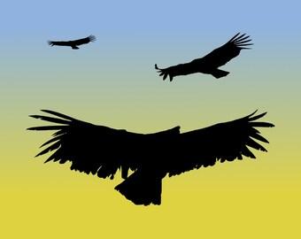 DIGITAL DOWNLOAD - California Condors in Flight Silhouette at Sunrise